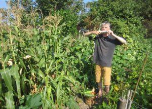 Wie wird bei o'pflanzt is! … mitgemacht?
